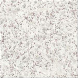 Гранит белый WHITE PEARL