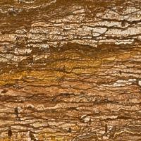 Травертин коричневый WALNUT